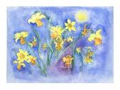 Image of Daffodil Flower Fairies Print