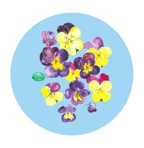Image of Pansies Circle print