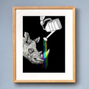 Image of Rhino - Limited Edition Print