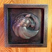 Image of Orbicular Sea Turtle