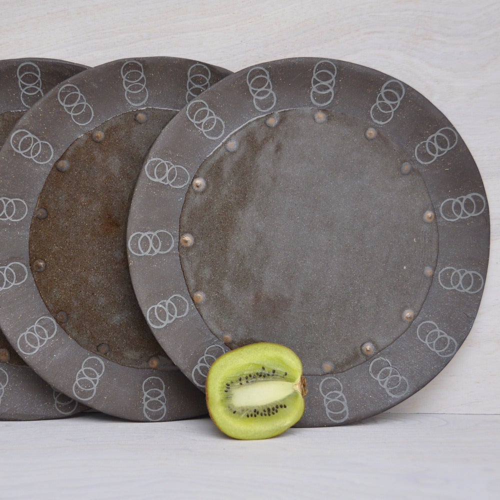 Image of riveted spring plates