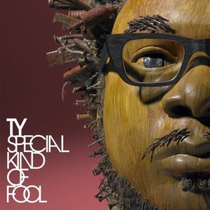 Image of Special Kind of Fool - Ty | Vinyl