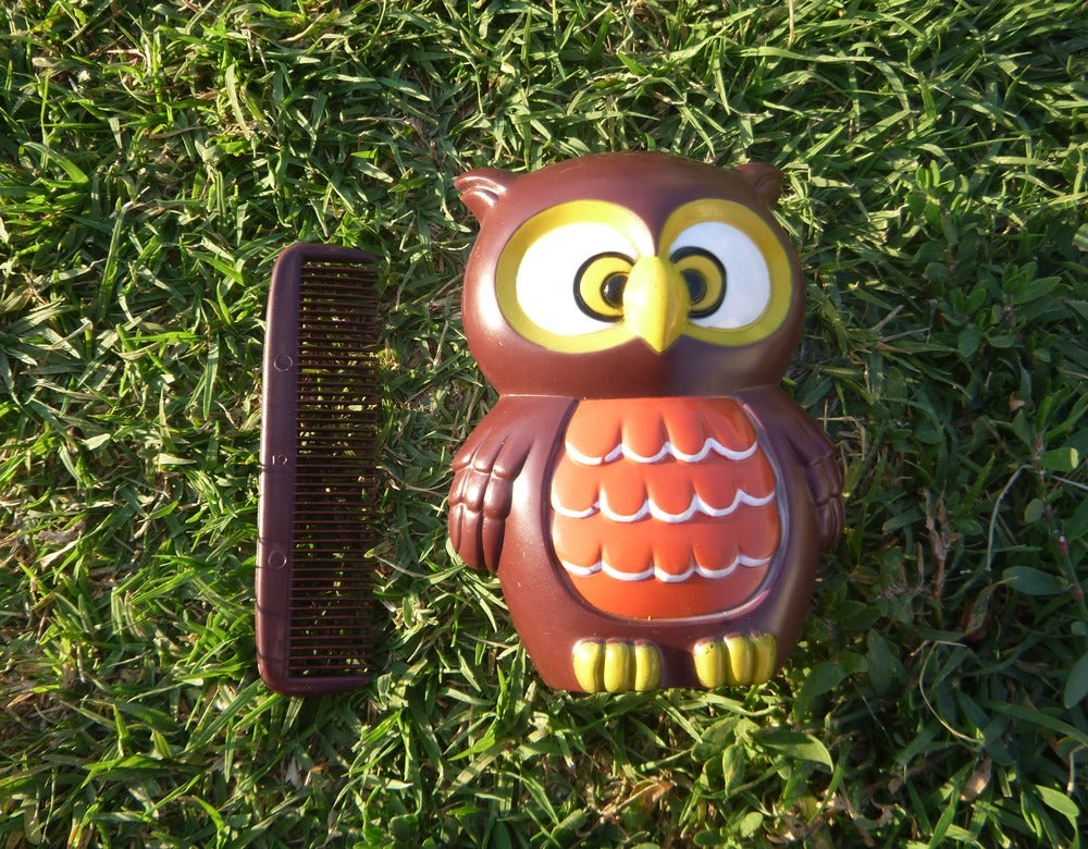 Image of Vintage Owl Brush & Comb Set