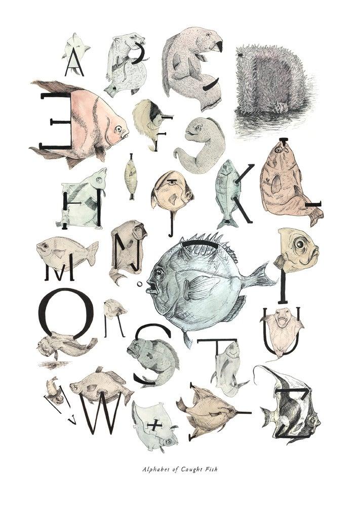 Image of Alphabet of Caught Fish - Digital Print