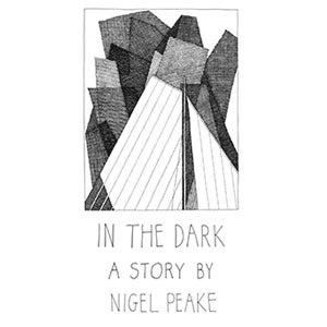 Image of In the Dark (book)