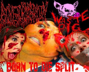 "Image of Waste Pig/Goretorngroin ""BORN TO DIE"" Split"