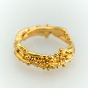 Image of Fine Kelp Ring.