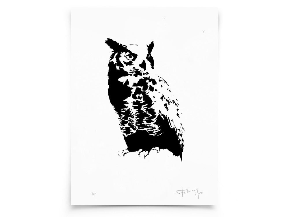 Image of Owl on paper - Screenprint