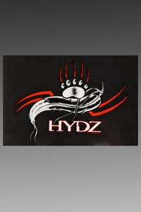 Image of HYDZ Decal Pack (SOLD OUT)