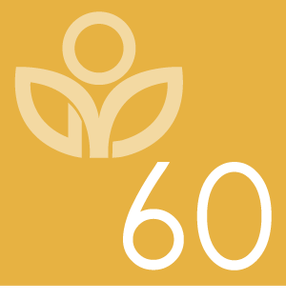 Image of Meditation Class: 60 minutes