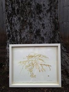 Image of Framed Lithograph: Shoal Creek II