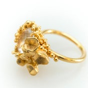 Image of Encrusted Blossom Ring..