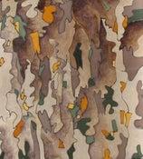 Image of Bark Impressions - 2