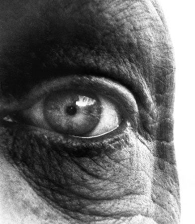 Image of Dubuffet's Eye, 1960
