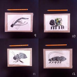 Image of Bugs (C)