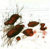 "Image of Madraso ""Vanhorne"" Colored Vinyl LP"