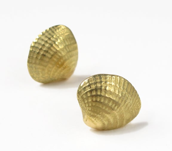 Image of Shell Clip Earring Cross Barred Venus