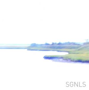 Image of SGNLS - SGNLS LP