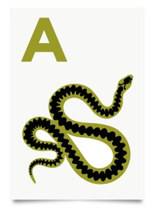 Image of A is for Adder print