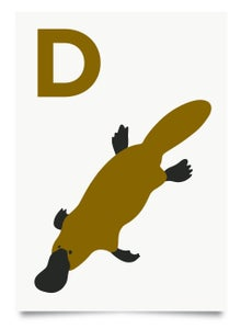 Image of D is for Duck-Billed Platypus