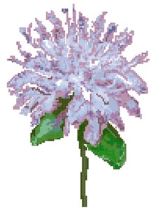 Image of Bergamot Cross Stitch Pattern