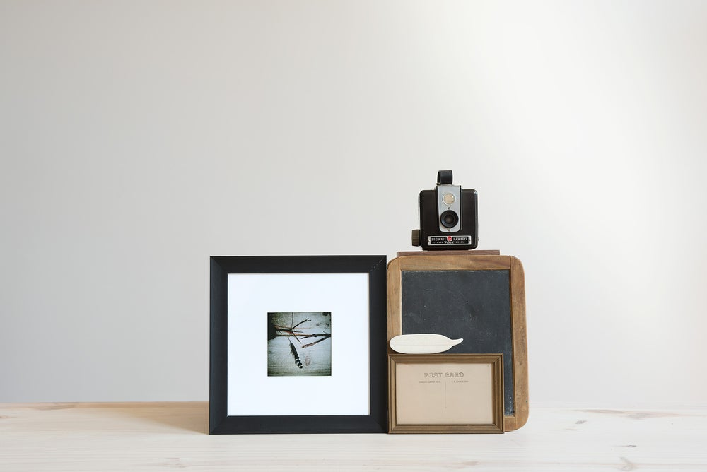 Image of feather and twigs framed photograph