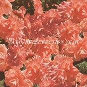 """Image of TAXA, """"Ressurection Year"""" 7"""""""