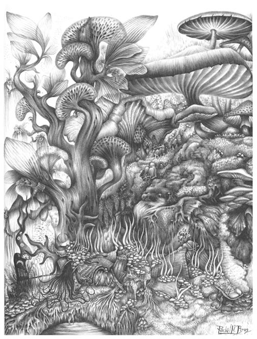 Image of Signed Artist Proof: 'Inevitability' by Rachel M. Bray!