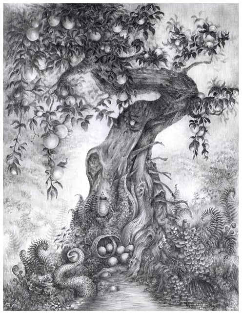 Image of Signed Artist Proof: 'Fruited' by Rachel M. Bray!