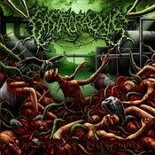 Image of GASTRORREXIS The Taste of Putrefaction CD
