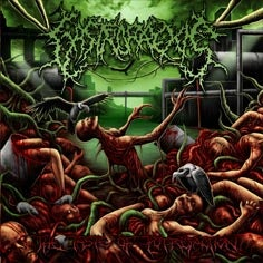 Image of GASTRORREXIS The Taste of Putrefaction CD