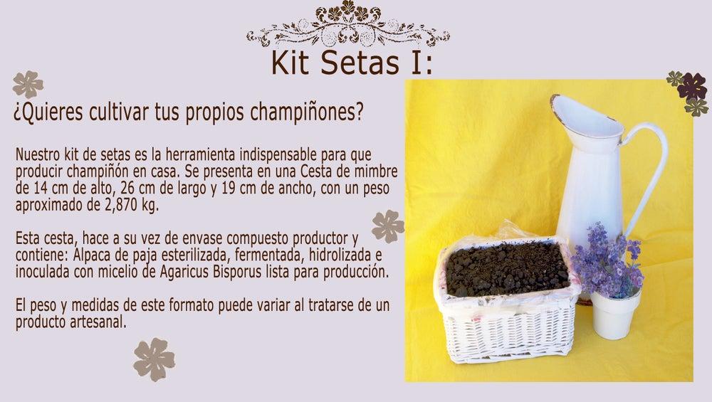 Image of Kit Setas Cesta