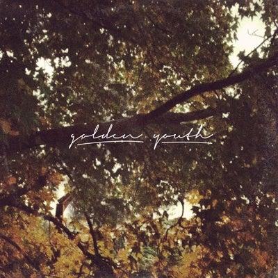 Image of QUIET FRAME; WILD LIGHT CD