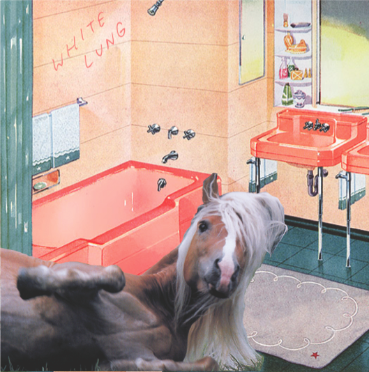 Image of White Lung - Songs of the South (SEXBEAT020)
