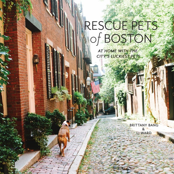 Image of Rescue Pets of Boston - The Book