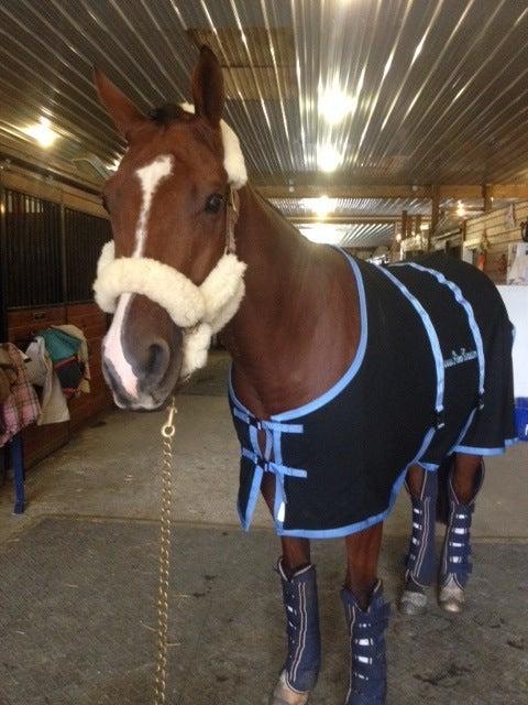 Image of Saratoga Horseworks Anti-Sweat Sheet