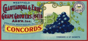Image of Chautauqua & Erie Grape Growers Co-Op
