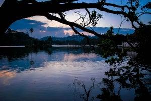 Image of Fairytale // Kandy, Sri Lanka