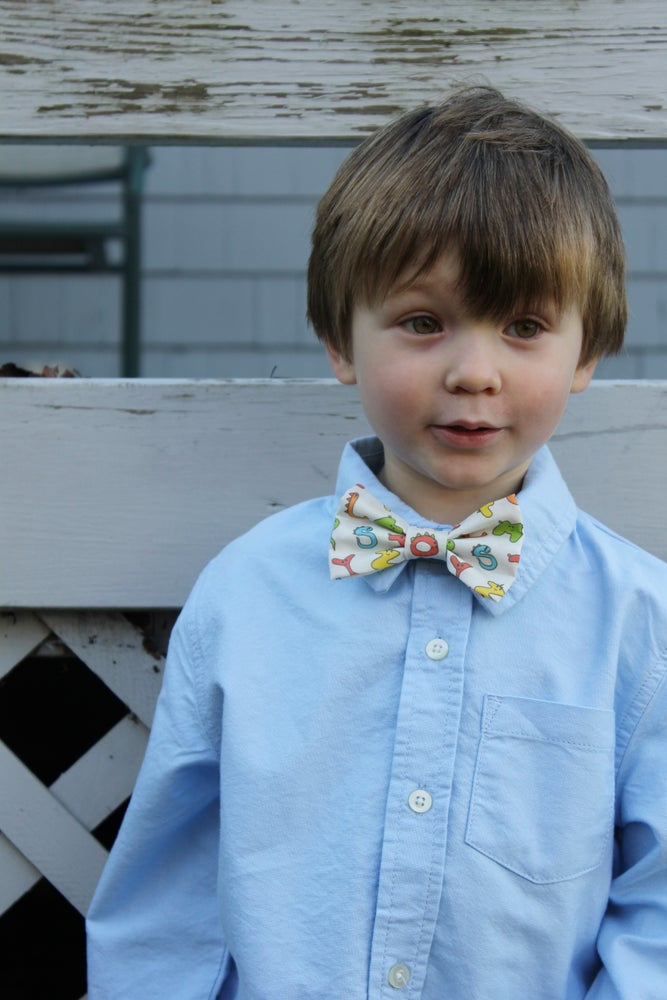 Image of Clip-on Bow Tie