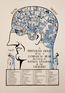 Image of Phrenology Head