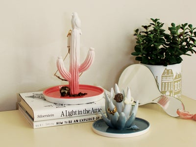 Image of Imm Living Desert Flora Aloe Vera Jewellery Holder