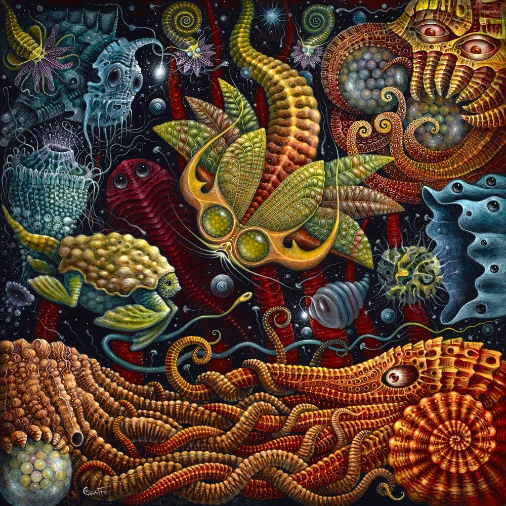 "Image of ""SEAPODS"", 20 x 20"" Open Edition Giclee Print"