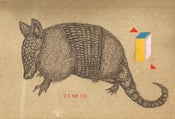 Image of Armadillo Poster