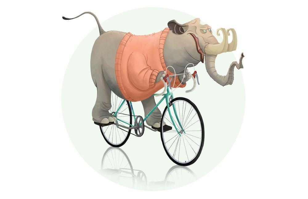 Image of Elephant Messenger