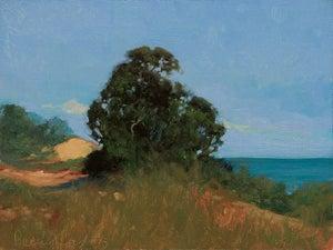 Image of Pacific Coast V