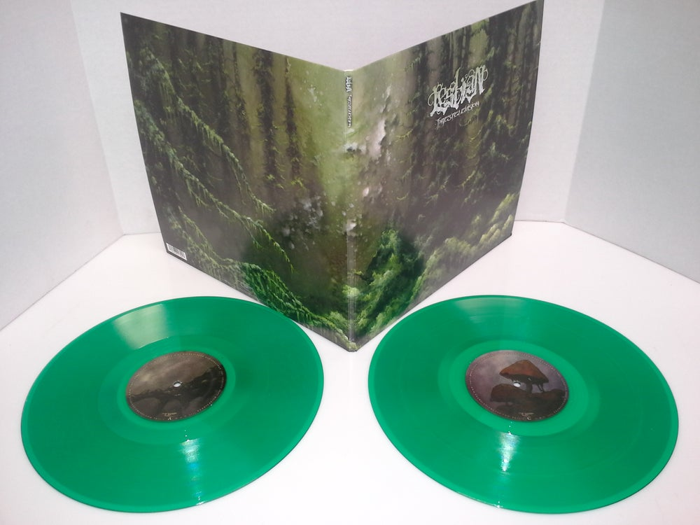 Image of Lesbian - Forestelevision 2xLP