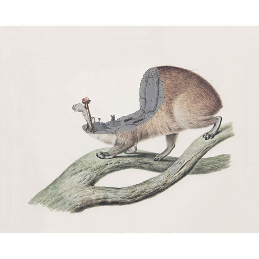 Image of Daniel Sparkes - 'Segmore's Colonial Shovel (Going out on a Hyrax)'. Gicleé print