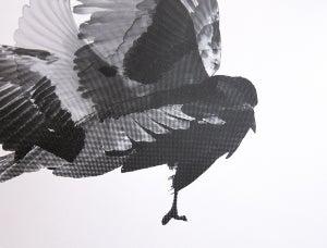 Image of Bird Print