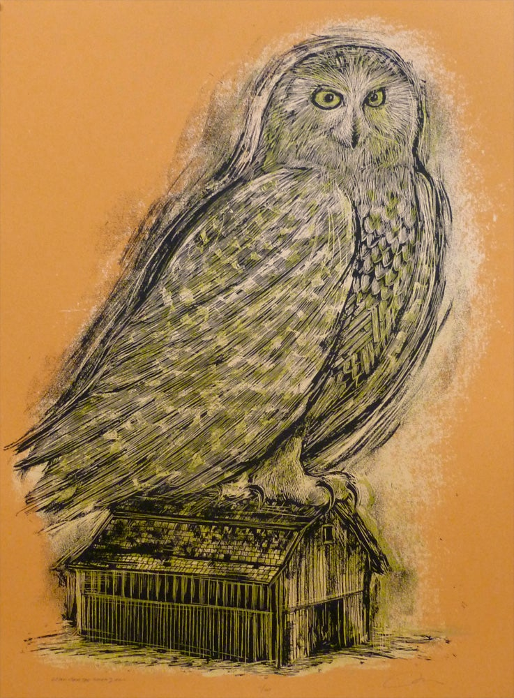 Image of Reconstructed Snowy Owl Orange