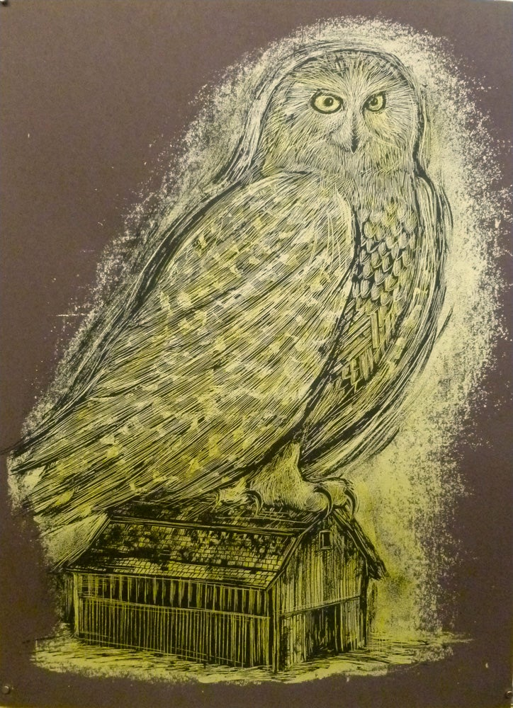 Image of Reconstructed Snowy Owl Chocolate Brown
